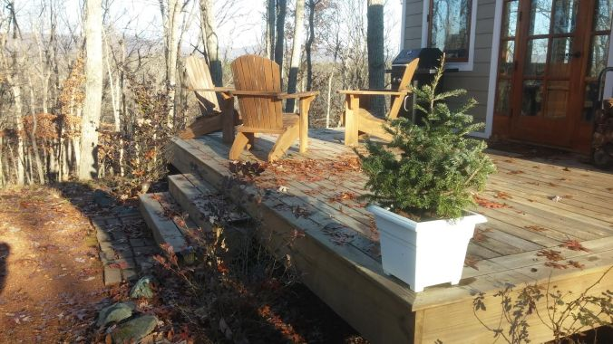 fir on cottage deck.jpg