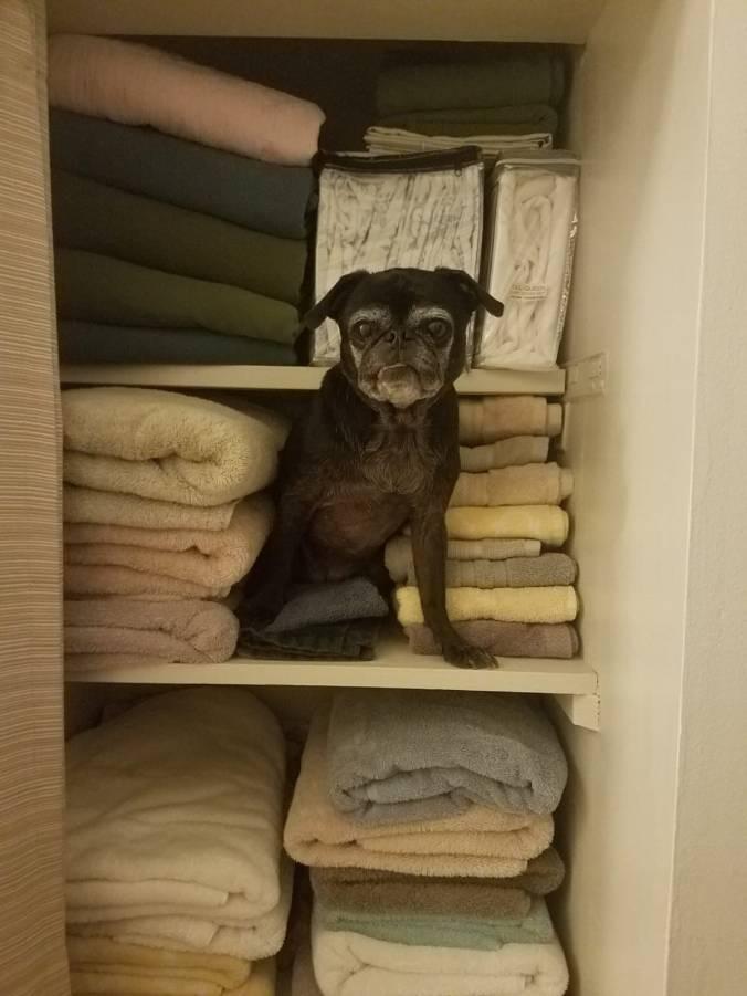 in closet.jpg