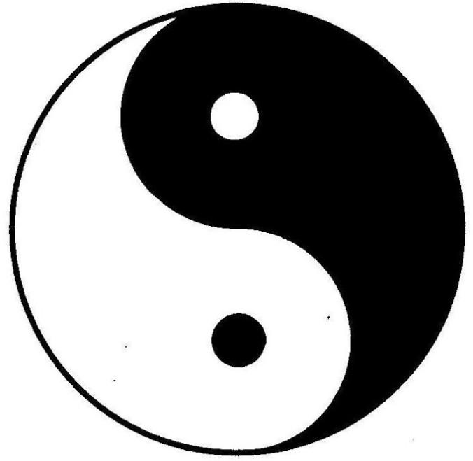 yinyang (3).jpg