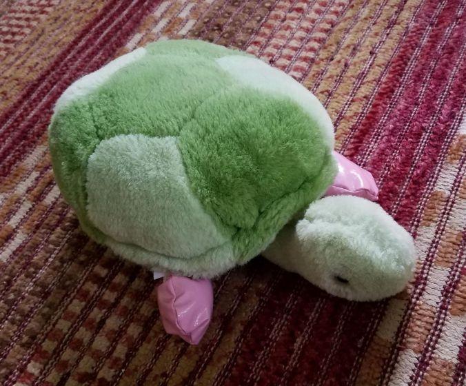 turtle (2).2mp.jpg