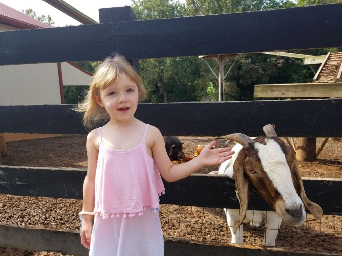 Ellie at yoders with goat sept 2019.2mp